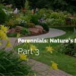 farden with walkway with text perennials: Nature's survivors part 3